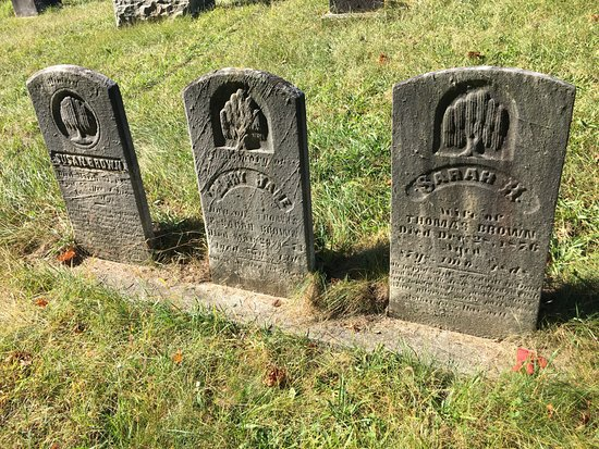 Martinsburg, WV: Stylized weeping willow trees on family stones in Greenhill Cemetery