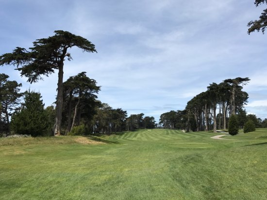 Hole 14 Picture Of Harding Park Golf Course San Francisco Tripadvisor