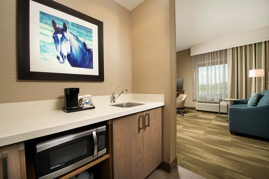 Timonium, Мэриленд: King Bed Suite Room