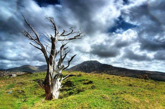 Connemara National Park Nature Trails ...