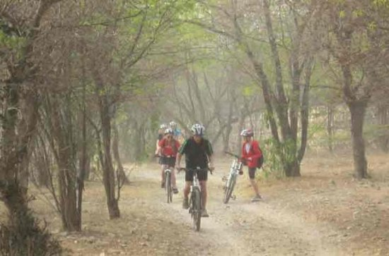 Tour Pedal de Vida Selvagem de Jaipur