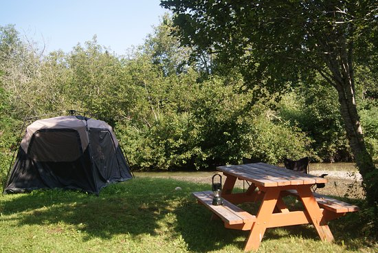 Nakusp, Canada: Grassy campsite by the creek for tenting or RV