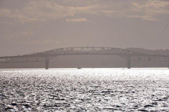 Auckland Harbour Bridge: 夕暮れ時に海から眺める
