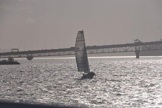 Auckland Harbour Bridge: 行き交うヨットと一緒に写す