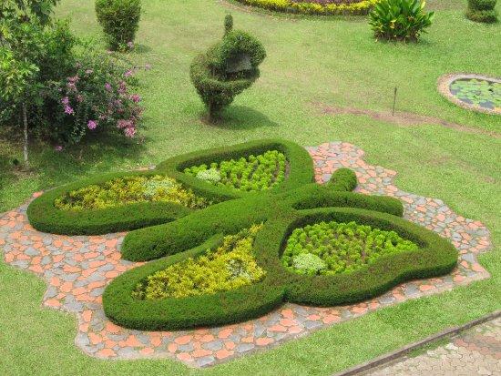 Butterfly Park Picture Of Nilambur Teak Museum Malappuram Tripadvisor