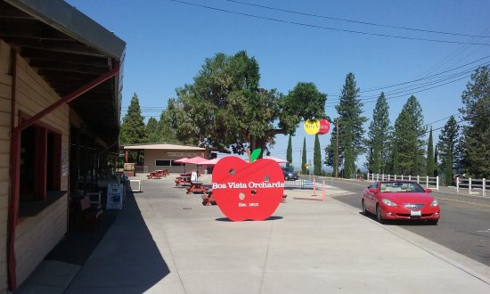Placerville, CA: view from the street
