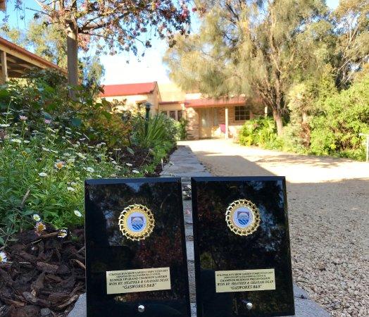 Strathalbyn, Australia: Best Garden 2017 :)