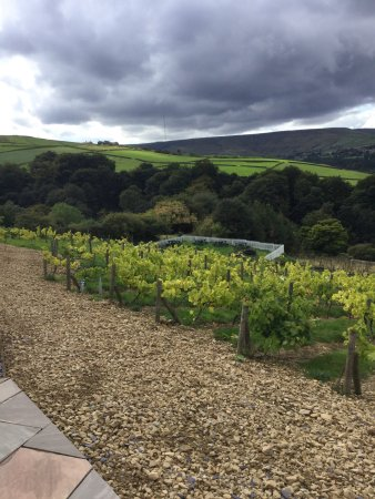 Holmfirth Vineyard: photo0.jpg