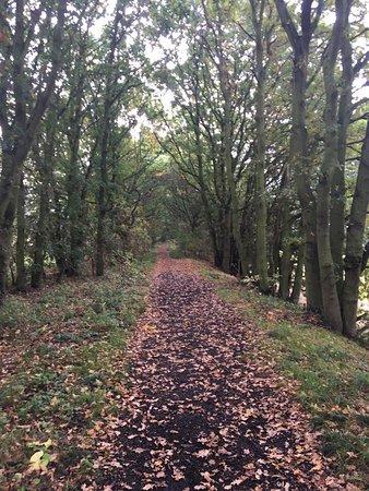 Wix, UK: Blackwater Rail Trail