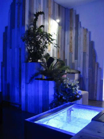 aquafish spa libourne frankrike omd men tripadvisor