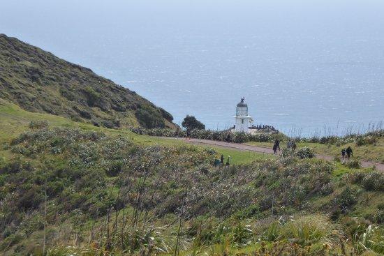Île du Nord, Nouvelle-Zélande : Down to the lighthouse.