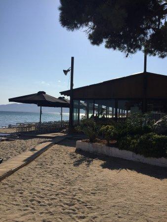 Schinias, กรีซ: Delfini