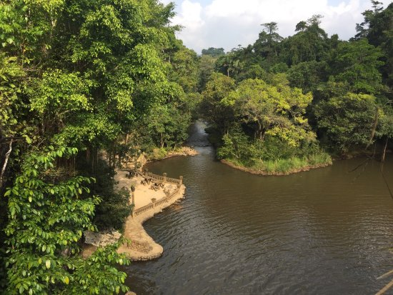 Mena Creek, Australia: photo1.jpg