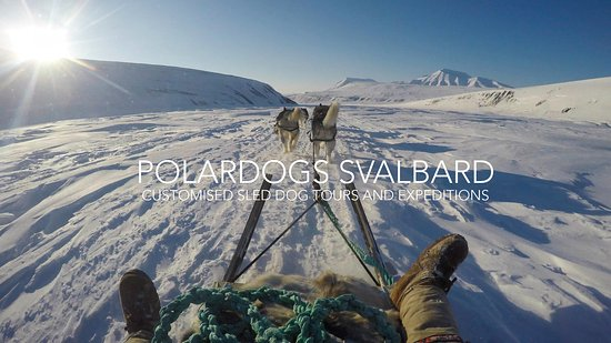 ‪Polardogs Svalbard‬