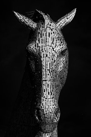 James Christie Photography - Edinburgh Photography Tours Limited: One of the Kelpies in Falkirk, from a private tour of the Highlands
