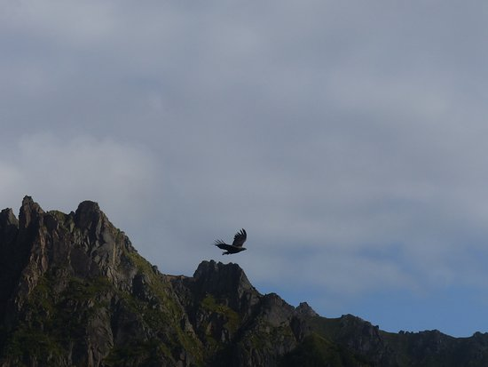 Svolvær, Norge: Here comes another one....
