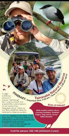 Santa Marta District, Colombia: Reserva Natural Taironaka