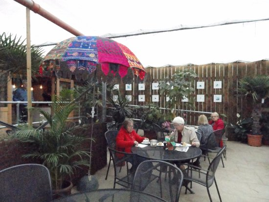 Bampton Garden Plants Cafe