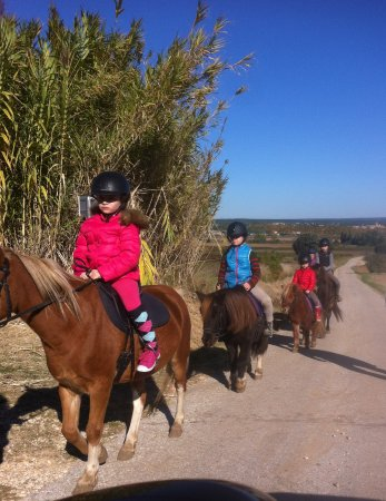 Collias, France : Stage balade et manège pour les petits