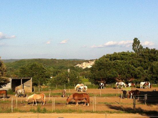 Collias, France : Cavalerie