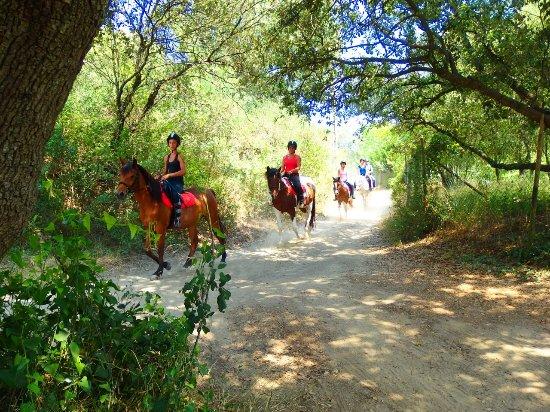 Collias, France : Balade à cheval