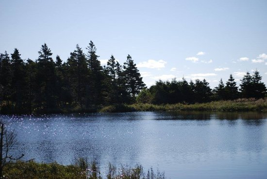Guysborough, Canadá: one of the ponds