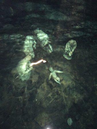 Grotta dello Smeraldo (Emerald Grotto): Presepe sommerso