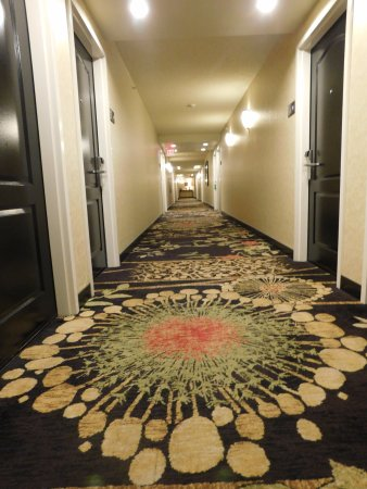 Hampton Inn & Suites Greenville - Downtown - Riverplace: Hallway pic