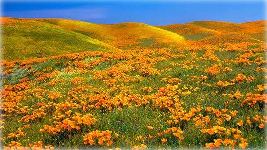 lancaster california usa