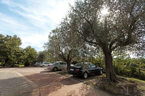 Sovana, Italien: Parcheggio dell'Albergo