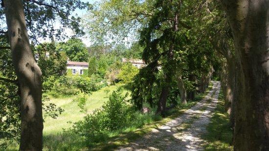 Puylaurens, Francia: Accès au domaine