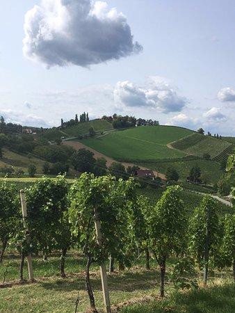Ratsch an der Weinstrasse, Austria: nicht in der Toscana sondern Blick von der Kästenburg ins Land hinaus