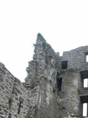 Carrick-on-Suir, Irlanda: Ruins of the pld tower with tudor windows