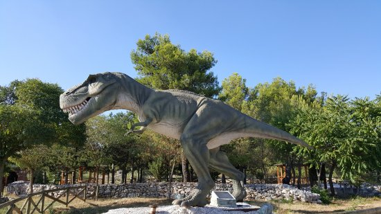 Paleontological Museum and Dinosaur Park