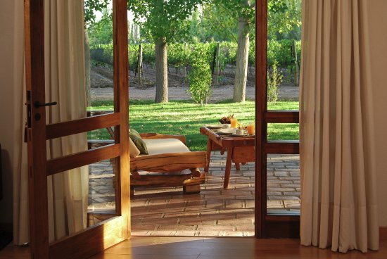 Algodon Wine Estates & Champions Club: Vineyard Views