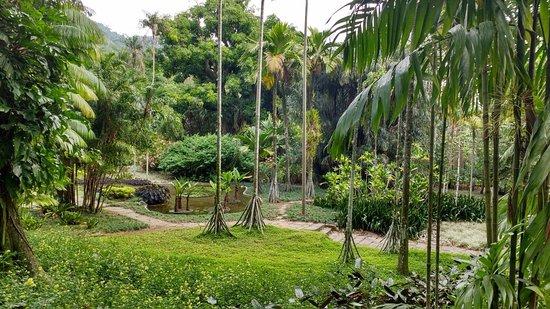 Sitio Roberto Burle Marx: Lago no Sítio Burle Marx