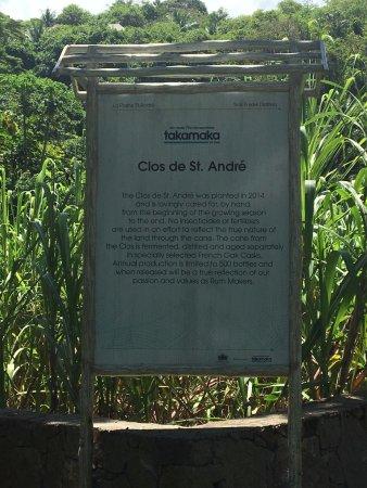 La Plaine St. Andre : Sugar Cane