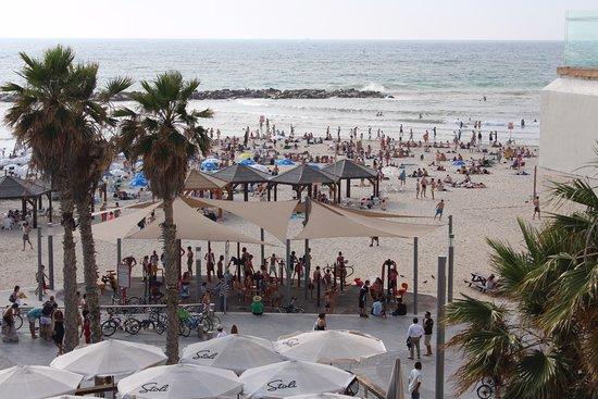 Old Tel Aviv Port Area: набережна в Тель-Авіві, чиста. красива. культурна, багато людей, всі умови для відпочинку