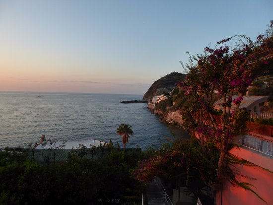 Hotel Casa Rosa: View from the Room 235