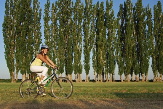 Algodon Wine Estates & Champions Club: Biking
