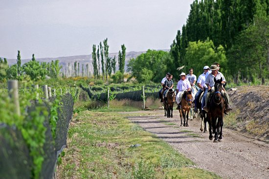 Algodon Wine Estates & Champions Club: Horseback Riding