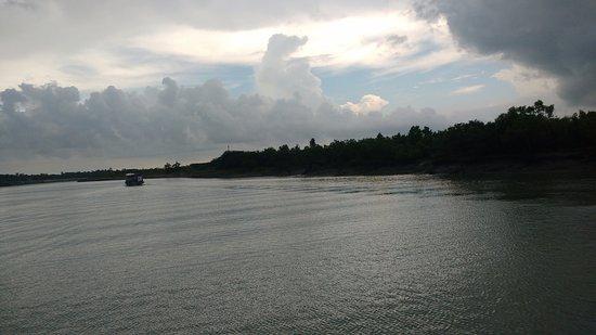 Sundarban, Ινδία: Mangrove forest