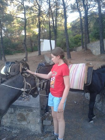 Asklipiio, กรีซ: PAUSE DURANT LA PROMENADE