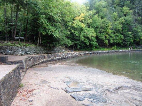 Forksville, Pensilvanya: The swim area