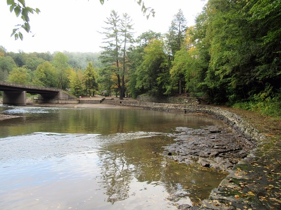 Forksville, PA: Swimming area
