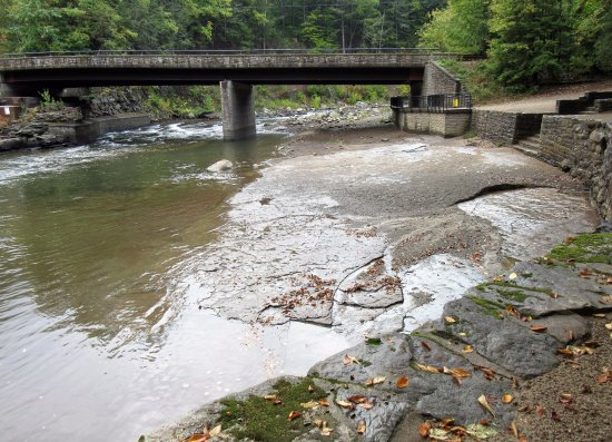 Forksville, Pensilvanya: Swimming area