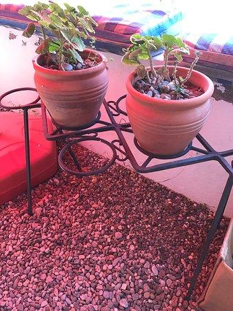 Dalyan Iz Cafe: photo9.jpg