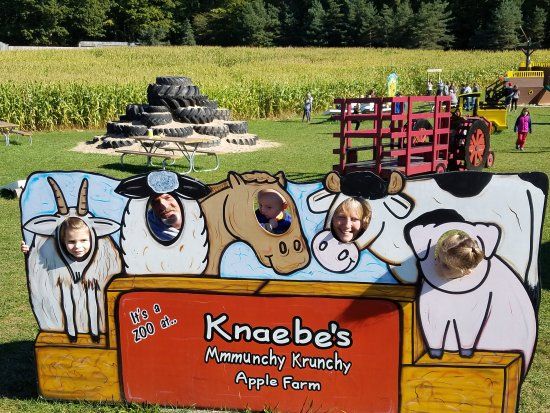 Knaebe's Mmmunchy Krunchy Apple Farm & Cider Mill: Great family fun and relaxation!