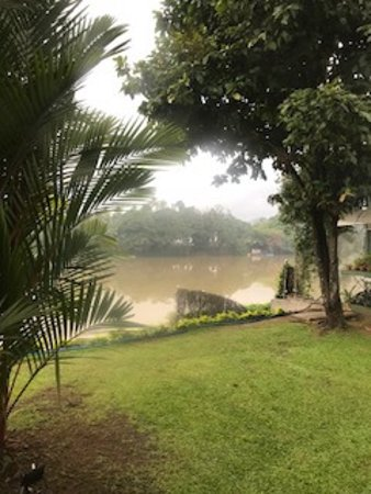 Mahaweli Reach Hotel : River view from the room