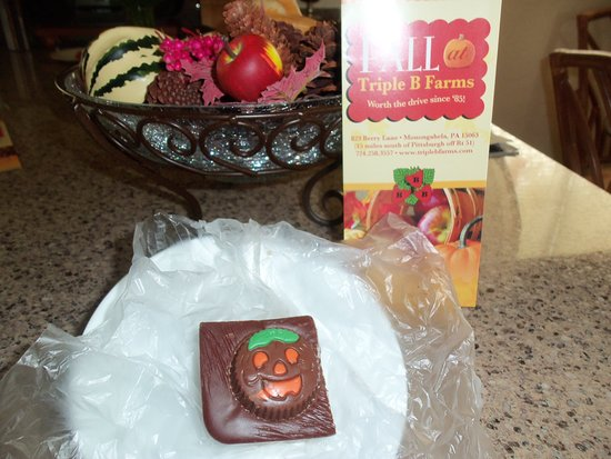 Triple B Farms: A picture of the peanut butter fudge--creamy and delicious!